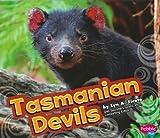 Tasmanian Devils (Pebble Plus: Australian Animals)