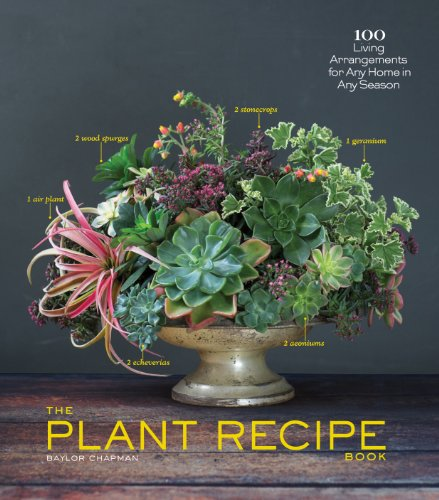 the-plant-recipe-book-100-living-arrangements-for-any-home-in-any-season