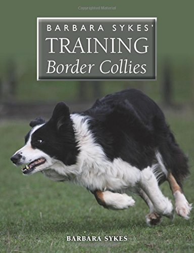 Barbara Sykes' Training Border Collies