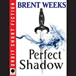 Perfect Shadow: A Night Angel Novella (       UNABRIDGED) by Brent Weeks Narrated by James Langton