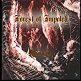 Demonvoid by Forest Of Impaled (1980-01-01)