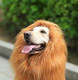 Looching Lion Mane Dog Costume Wig, Brown