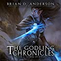 The Godling Chronicles: A Trial of Souls, Book 4 (       UNABRIDGED) by Brian D. Anderson Narrated by Derek Perkins