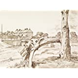 Old Cottages, Sunny Terrace, Norby, Thirsk, by Michael Rothenstein (Print On Demand)