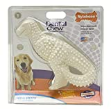 Nylabone Durable Dental Dinosaur Chew Toy (Dinosaur Varies)