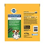PEDIGREE DENTASTIX Fresh Large Treats for Dogs 1.52 Pounds 28 Count by Pedigree