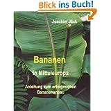 Bananen in Mitteleuropa: Anleitung zum erfolgreichen Bananenanbau