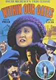 Within Our Gates [DVD] [1920] [Region 1] [NTSC] [US Import]