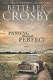 Passing through Perfect: The Wyyattsville Series, Book 3 (The Wyattsville Series) (Volume 3)