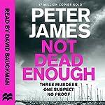 Not Dead Enough: Roy Grace, Book 3 | Peter James