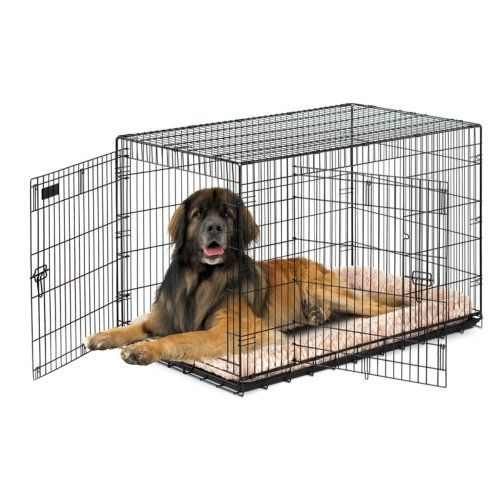 Precision Pet Products Precision Provalu Great Crate Double Door Dog Crate With Free Pad -, Black, Medium - 30L X 19W X 21H In. front-995509
