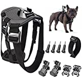 Zookki Dog Harness Chest Mount Accessory Kit for GoPro Hero 4 Black GoPro Hero 4 Silver GoPro Hero 4 3+ 3 2 and SJ4000 SJ5000 SJ6000 Sports Camera