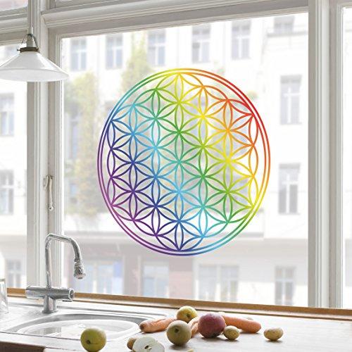 adesivi-da-finestra-flower-of-life-rainbow-color-immagini-da-finestra-pellicola-per-finestra-adesivo