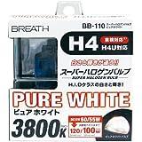 ベイテックススーパーハロゲンバルブ H4 ピュアホワイトH4 3800K BB-110(2個入)