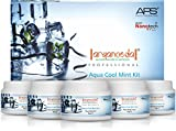 Aryanveda APS Aqua Cool Mint Kit, 510g