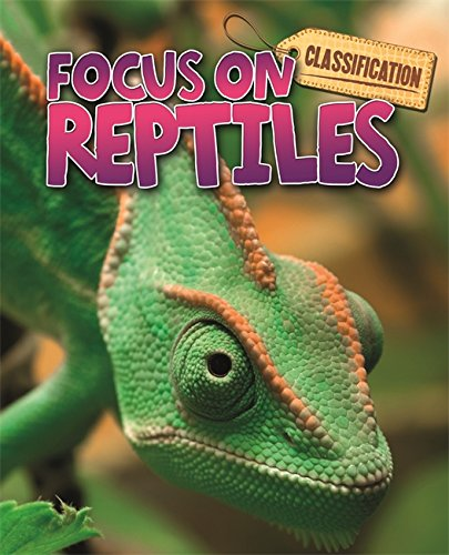 Classification: Focus on: Reptiles