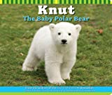 img - for Knut The Baby Polar Bear book / textbook / text book