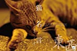猫名言 東西(cats and wise saying TOUZAI)