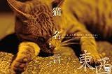 猫名言 東西(cats and wise saying TOUZAI)