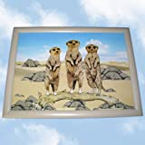 Novelty Meerkat Family Laptray. A Cushion TV Lap Trayby The Emporium Home