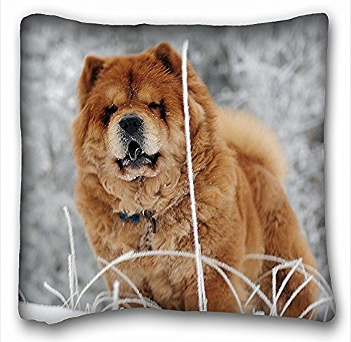 decorative-square-throw-pillow-case-animals-chow-chow-dog-s-face-fat-18in-x-18-in-two-sides