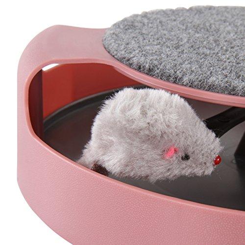 Leopet Katzenspielzeug Katzenkarussel Spielzeug für Katzen mit rotierender Maus und Kratzbereich in der Farbe Ihrer Wahl -