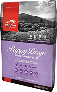 Orijen Large Puppy Formula Dog Food - 13lb