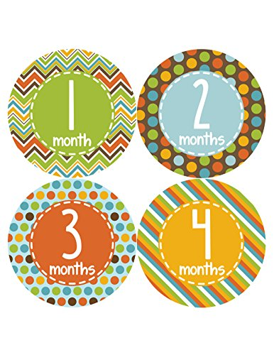 Months in Motion 378 Monthly Baby Stickers Baby Boy Months 1-12 Milestone