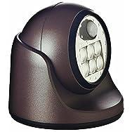 Porch Motion Floodlight-BRONZE 6 LED PORCH LIGHT