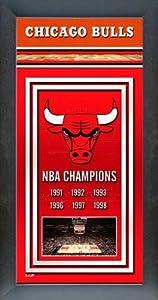 Chicago Bulls Framed Team Championship Banner Series