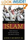 Sword of Islam : Muslim Extremism from the Arab Conquests to the Attack on America