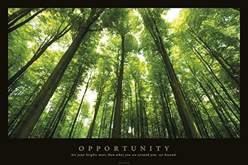 Opportunity Inspirational