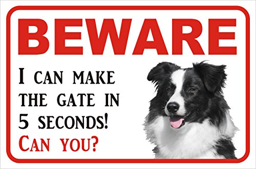 pet-sign-beware-5-seconds-border-collie-20x30cm