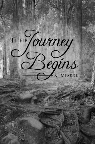 Their Journey Begins (Journey to Freedom) cover