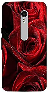 The Racoon Grip printed designer hard back mobile phone case cover for Motorola Moto X Style. (Red Rose)