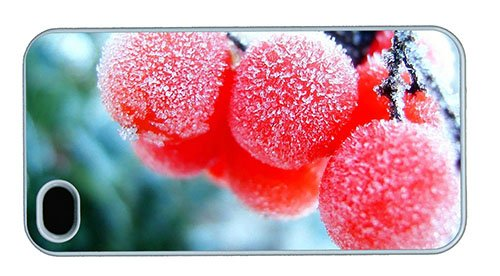 Hipster Iphone 4S Covers Awesome Frozen Fruits Pc White For Apple Iphone 4/4S front-1038727