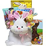 Art of Appreciation Gift Baskets Hippity Hop Plush Easter Bunny Gift Basket of Chocolate and Candy Treats