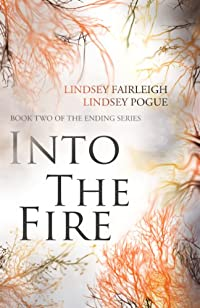 Into The Fire by Lindsey Fairleigh ebook deal