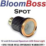 BloomBoss Spot LED Grow Light