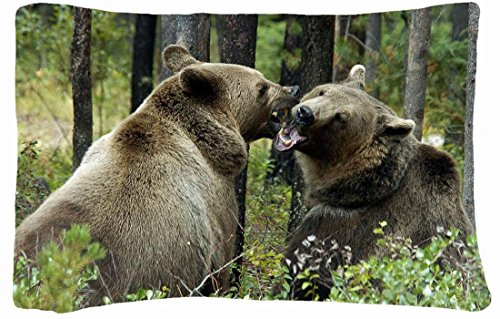 Bear Body Pillow back-272381