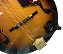 MANDOLIN PICKUP with MICRO-GOOSE NECK by Myers Pickups ~ See it in ACTION! Copy and paste: myerspickups.com