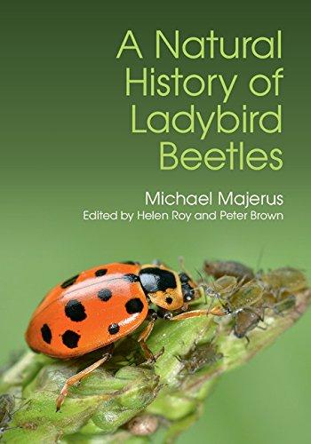 a-natural-history-of-ladybird-beetles