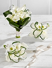 White Wedding Calla Lily Collection 1