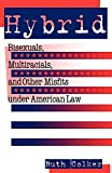 Hybrid: Bisexuals, Multiracials, and Other Misfits Under American Law (Critical America)