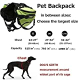 Pettom Hunderucksack Schultertasche für Hunde und Katzen Transportbox Haustiertasche tragbar Tasche Waterproof Hund Pack Reisen Camping Wandern Trainings Einstellbare Hund für Small & Medium & Large -