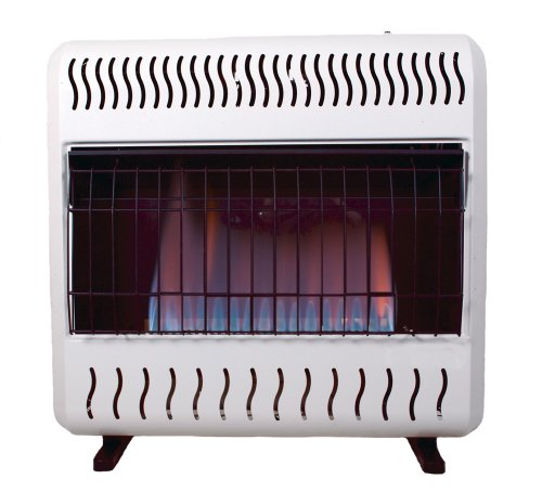 Gas Space Heaters With Blowers : Safe space heaters sure heat btu blue flame dual