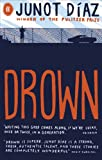 Drown (English Edition)