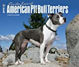 For the Love of American Pit Bull Terriers 2015 Calendar