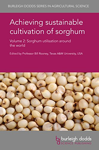 Achieving sustainable cultivation of sorghum Volume 2: Sorghum utilisation around the world (Burleigh Dodds Series in Agricultural Science)