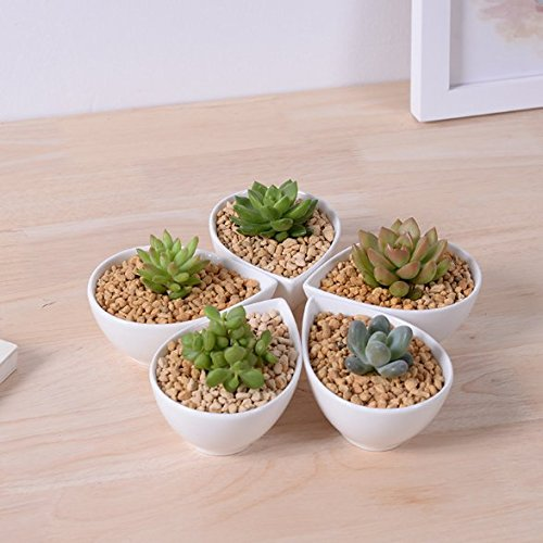 Succulent Pot, Herb Planter or Cactus Pot - White Minimalist Teardrop Pot - 4.1 x 1.9 x 3 inches - Indoor Outdoor Planter by Gander Lane